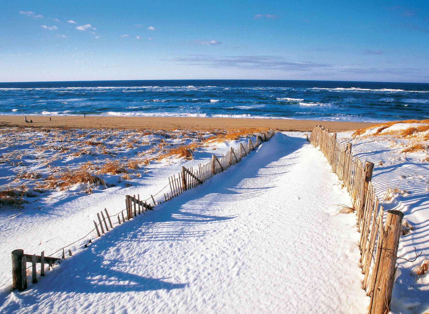 Martha S Vineyard Calendar Meds Maps Cape Cod